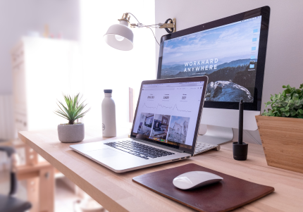 what to expect website design dev